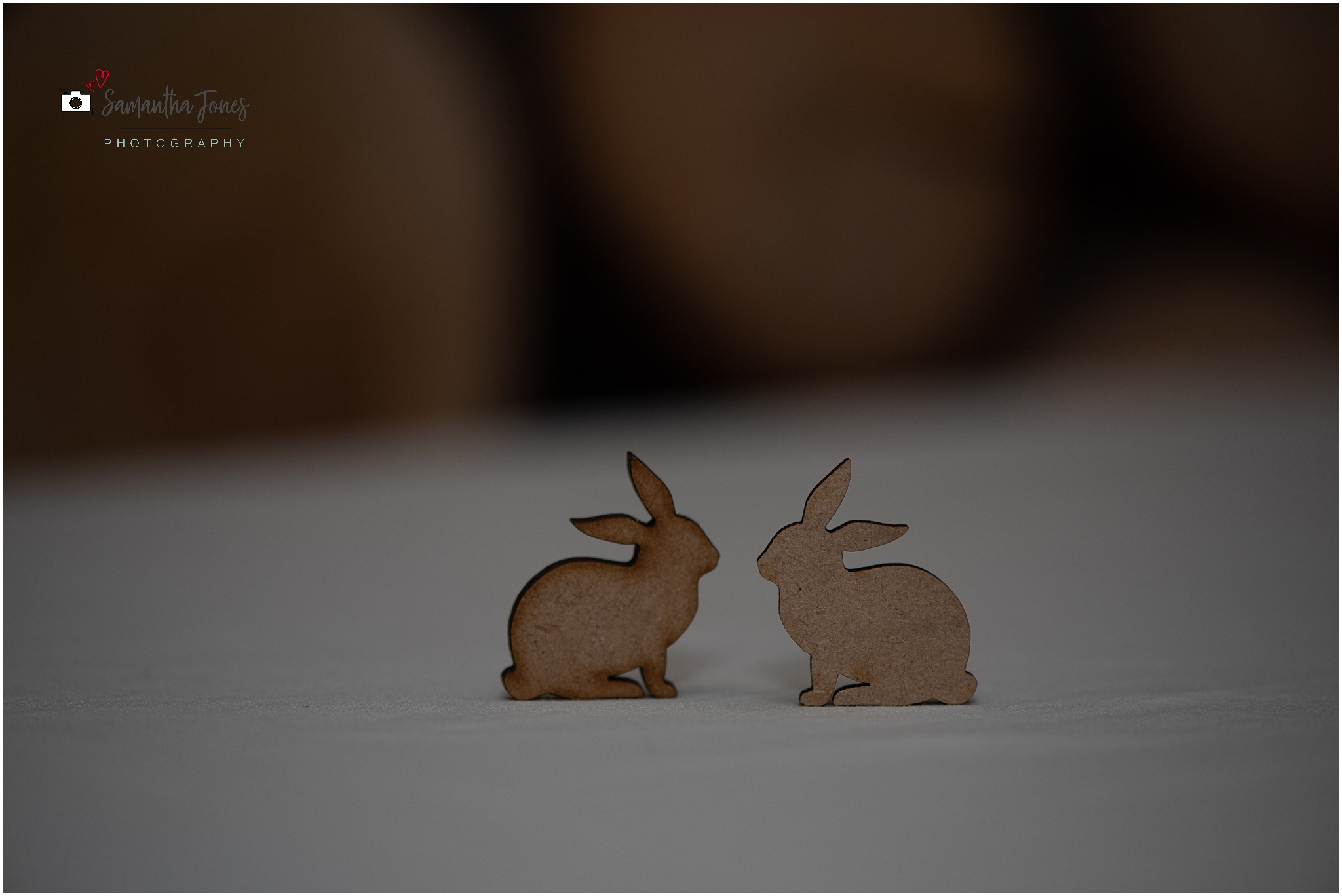 rabbit and rabbit